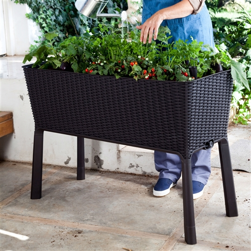 Modern Dark Brown Resin Wicker Raised Garden Bed Planter